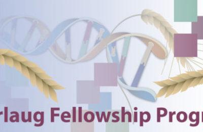 Borlaug Global Research Alliance Fellowships 2018