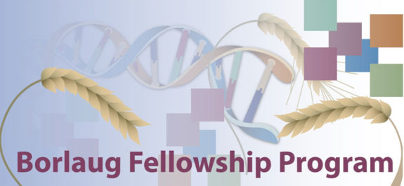 Borlaug Global Research Alliance Fellowships 2018