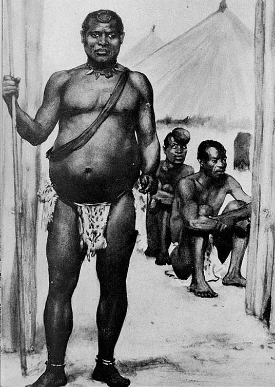 Lobengula's Gold Coated Spear Thief Found