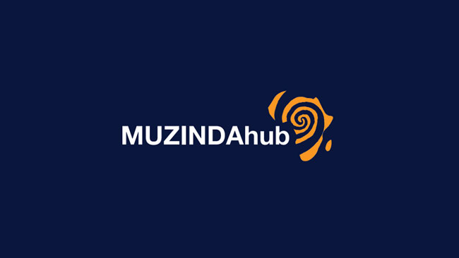 Muzinda Hub Digital Skills Training