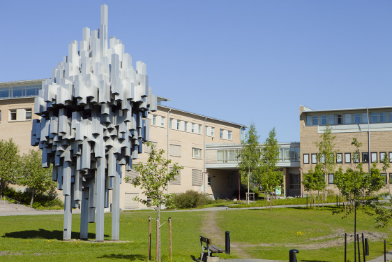 Opportunity For Zimbabwean Youth: Umeå University Scholarships for International Students