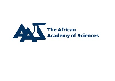 Future Leaders African Independent Researchers (FLAIR) Fellowships