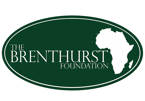 Applications Open For The Brenthurst Foundation's Machel Mandela Fellowship