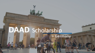daad scholarship form