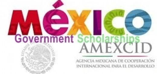 amexcid scholarship or grant essays