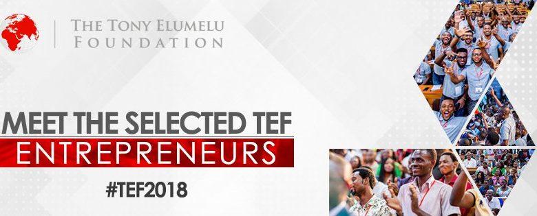 19 Zimbabweans Selected for the Tony Elumelu Entrepreneurs for 2018