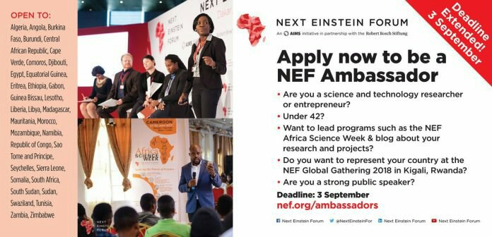 NEF Young Ambassador Programme 2017/2018